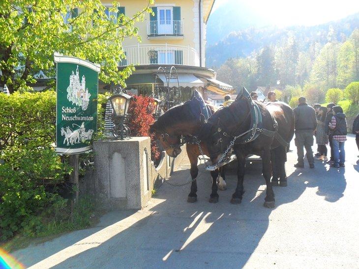 Caballos acceso Neuschwanstein