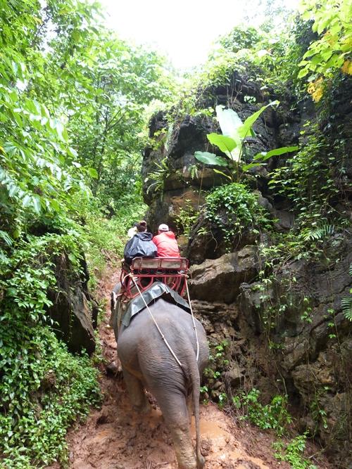 Elefantes por sitios imposibles