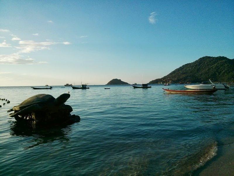 Isla Tortuga (Koh Tao - Tailandia)