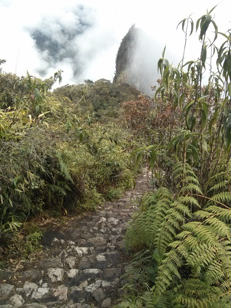 Subida a montaña Machu Picchu