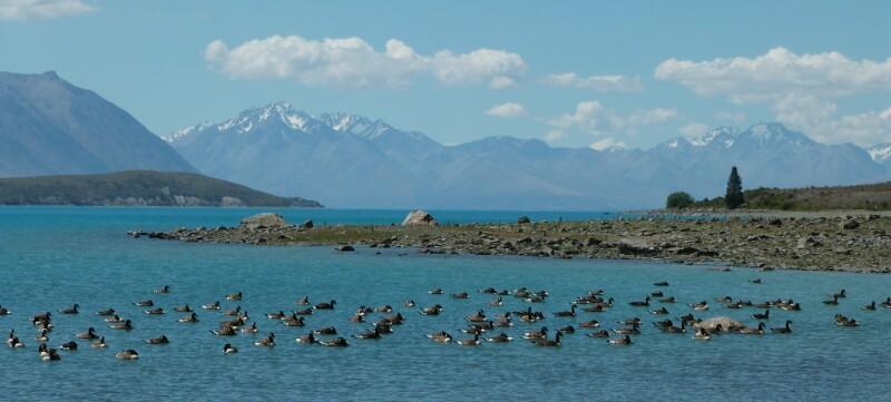 El lago Tekapo y los Alpes neozelandeses