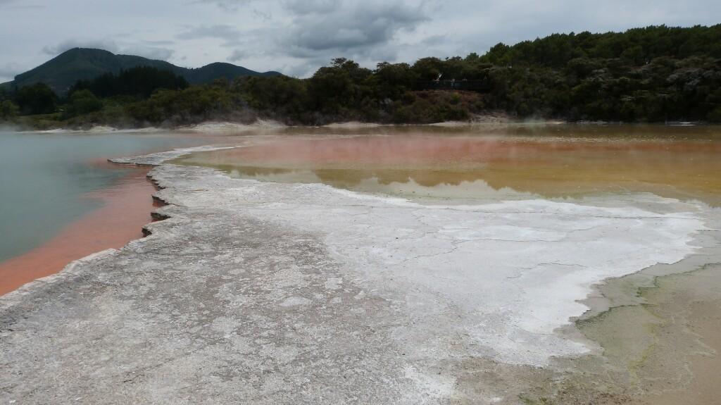 Piscina de champán y sulfuros en Rotorua