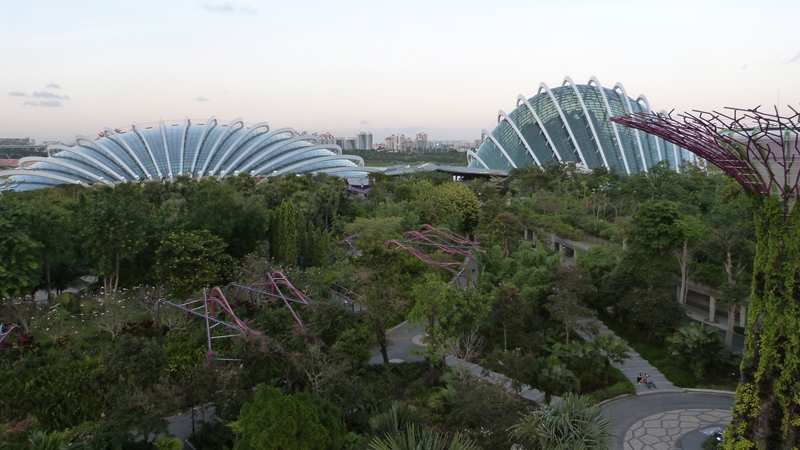Cloud Forest y el Flower Dome