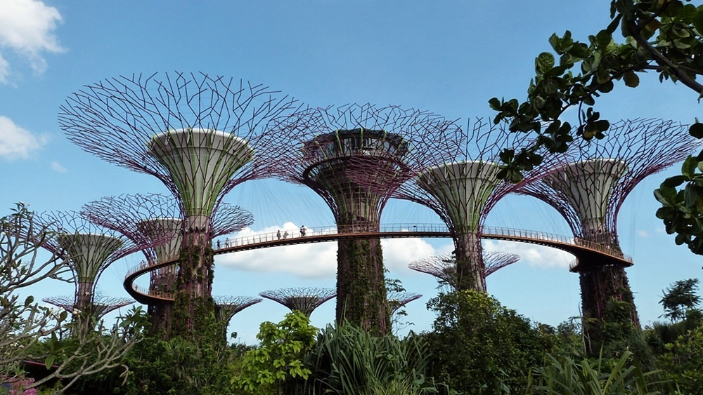 Gardens by the Bay, el jardín de la magia de Singapur
