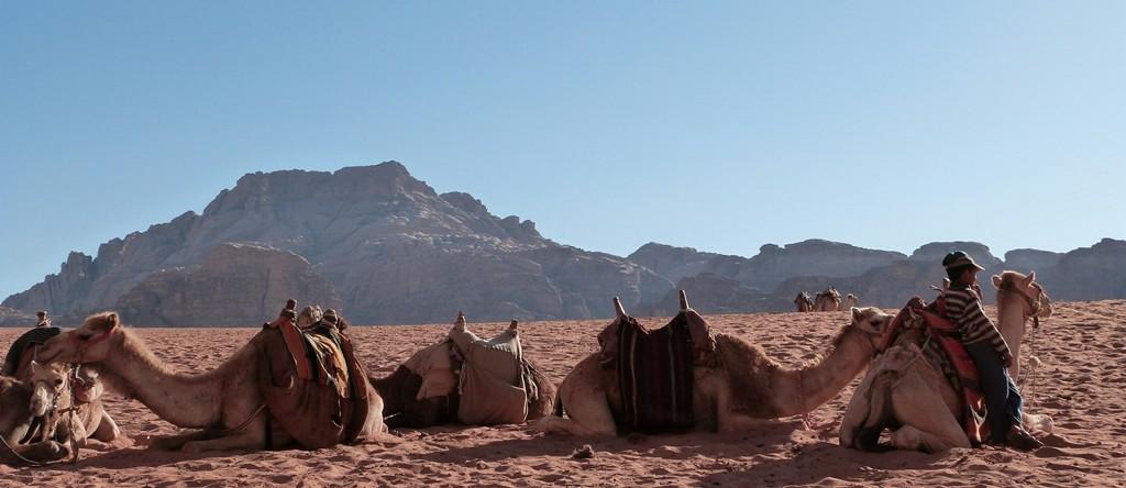 Escenas de Wadi Rum
