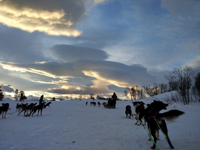 Tromso entre trineos de perros, cultura local y un fiordo encendido