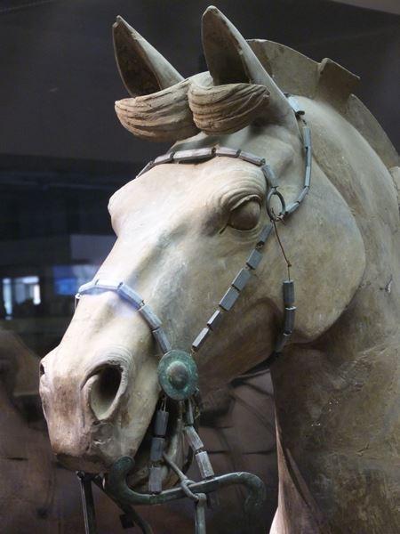 Detalle de un caballo del ejercito de Xian