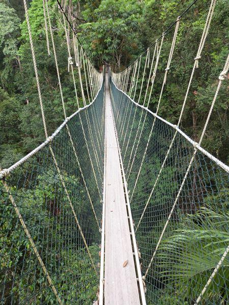 Afrontando el puente colgante