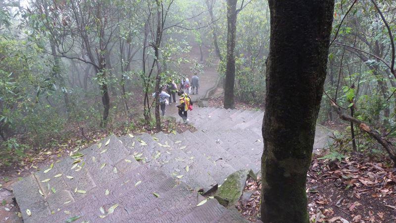 Escaleras en Zhangjiajie