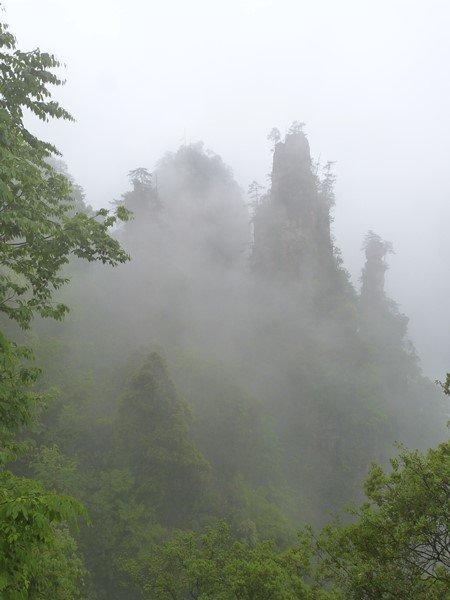 Niebla en Zhangjiajie