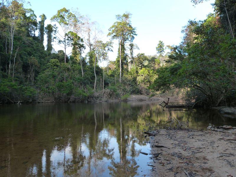 Ribera del río Tahan en Taman Negara