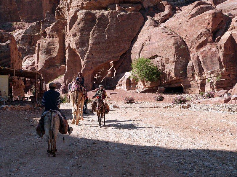 Comerciantes a primera hora por Petra