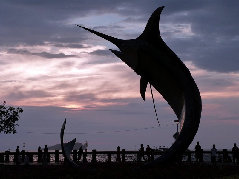 El delfín que simboliza KK