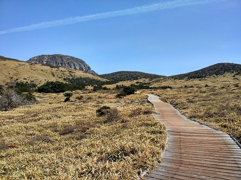 Caminando hacia el Monte Hallasan