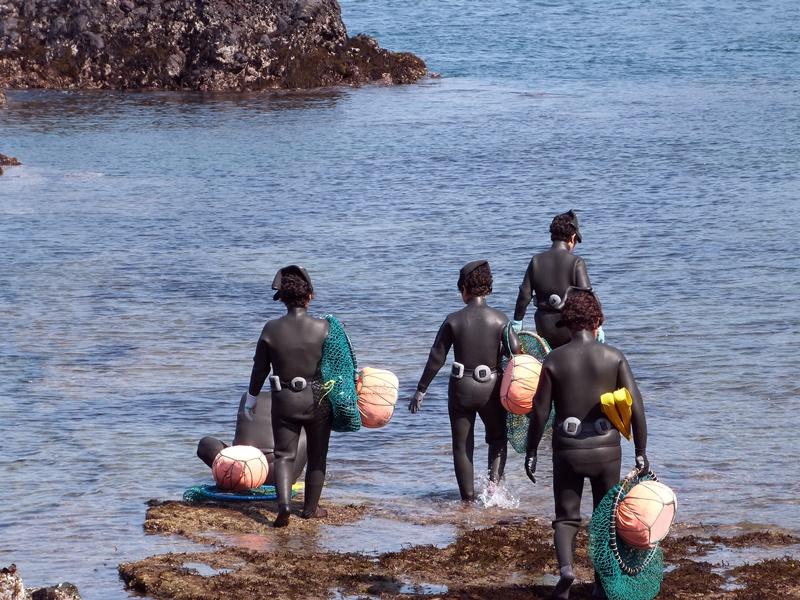 Mujeres buceadoras de Jeju